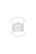 Image result for Lennie Tristano CVD