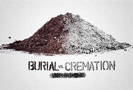 Image result for bury or cremate