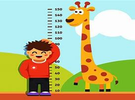 Image result for length and height