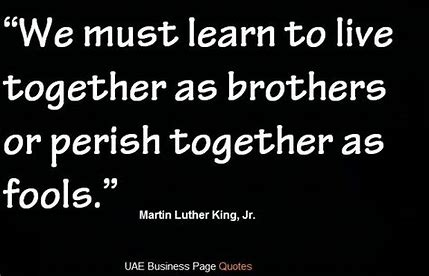 Image result for martin luther kind jr quote on unity