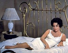 Image result for images liz taylor maggie the cat