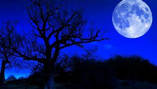 Image result for free pics of moon