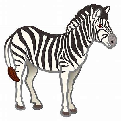 Image result for zebra clipart