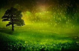 Image result for free picture of rain on fields