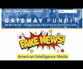 Image result for gateway pundit