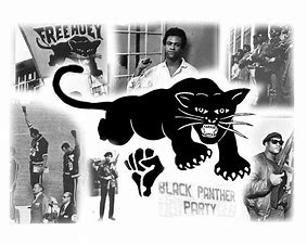 Image result for images black panthers political party