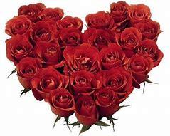 Obraz znaleziony dla: kwiaty dla mamy