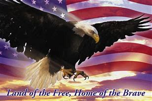 Image result for the home of the brave and land of the free