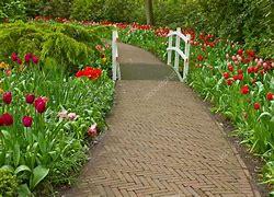 Resultado de imagem para imagem caminhos floridos