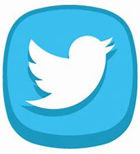Image result for Cute Twitter App Icon
