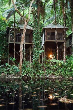 Image result for rainforest house australia