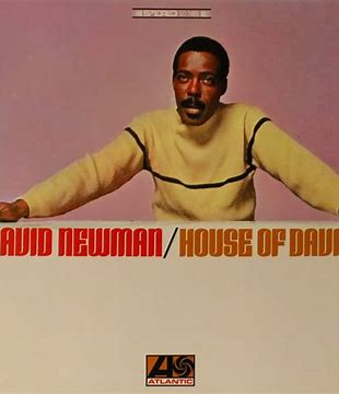 Image result for david newman house of david