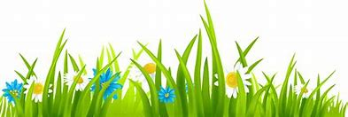 Image result for clipart grass pictures