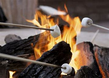 Image result for fire pit and smores