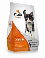 Image result for nulo cat & kitten