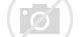 Image result for Disney bucks