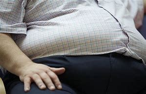 Image result for free pics of overweight men
