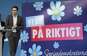 Bildresultat för sverigedemokraterna