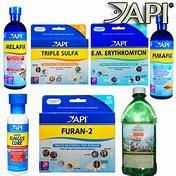Image result for fish medicine api