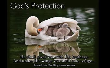 Image result for free picture of gods protection