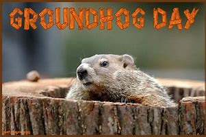 Image result for groundhog day funny images