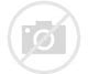 Image result for 1968 ford econoline pictures