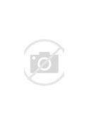 Résultat d'images pour Eisenstein cinéaste  images ,photos