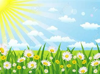 Image result for ammomation sunny days