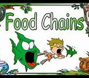 Image result for food chains