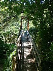 Image result for dark island swinging bridge
