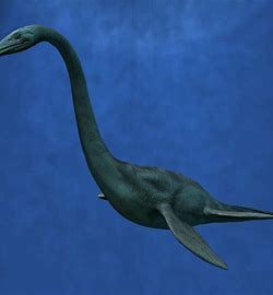Image result for plesiosaur\