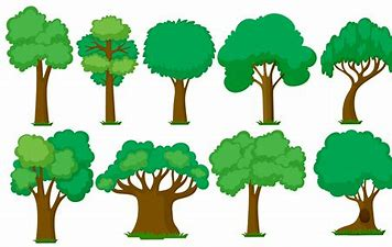Image result for clipart trees