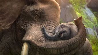 Image result for Elephant Love