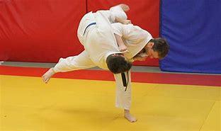 Résultat d'images pour judo