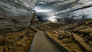 Image result for fun facts about mammoth cave