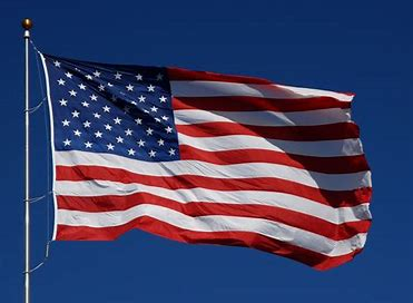 Image result for free pics american flag
