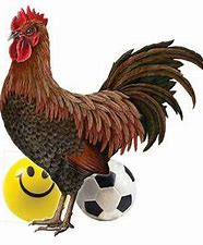 Image result for cartoon images cock and balls