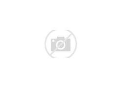 ハナコ岡部大学は推薦とバスケ