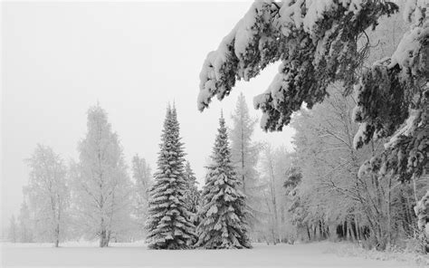 snow free stock photos winter download hd wallpapers