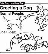 Image result for Joe Biden Cartoon Memes