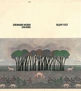 Image result for Eberhard Weber Silent Feet