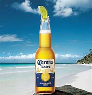 Image result for corona beer