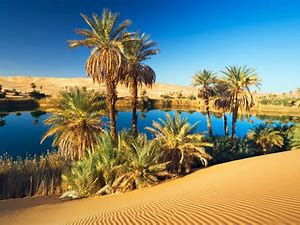 Image result for images saharan oases