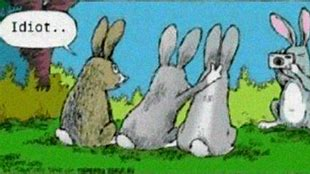 Image result for Cute Easter Meme