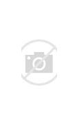 Image result for flickr commons images Lori Lightfoot