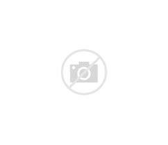 Image result for zoisite skull