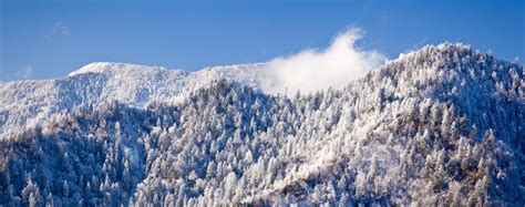 REASONS TO PLAN A SMOKY MOUNTAIN VACATION IN JANUARY