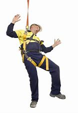 Image result for fall protection