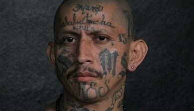 Image result for images ms 13 gangs with tattoos