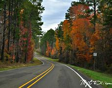 Image result for east texas photos